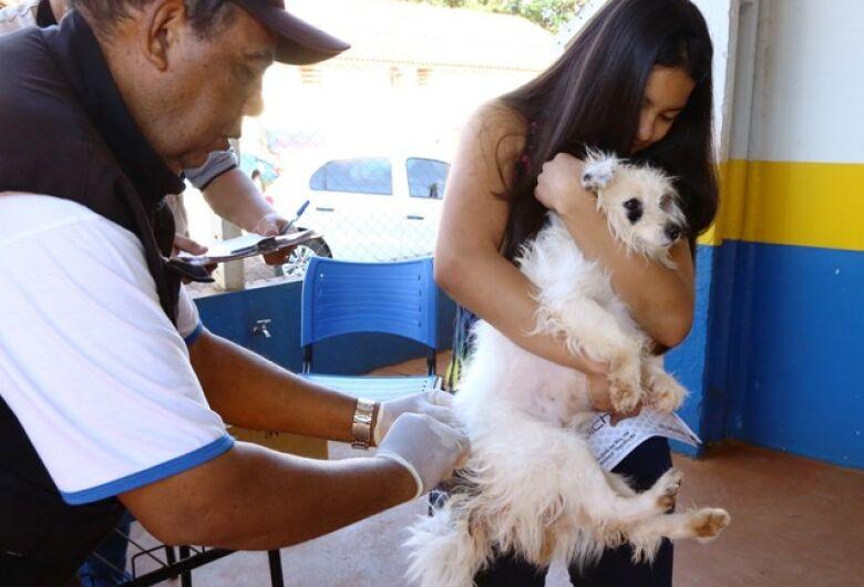 Vacinação antirrábica tem programação em vários bairros e área rural