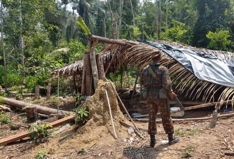 Oito são detidos na Operação Verde Brasil em Rondônia