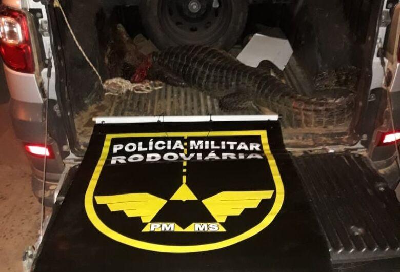 Polícia prende caçadores que mataram jacaré em MS