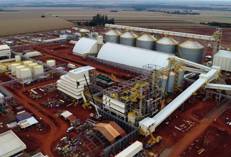 Complexo industrial começa operar neste mês em Dourados e deve gerar 350 empregos