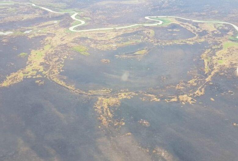 Após 23 dias de combate, incêndio é controlado no Pantanal