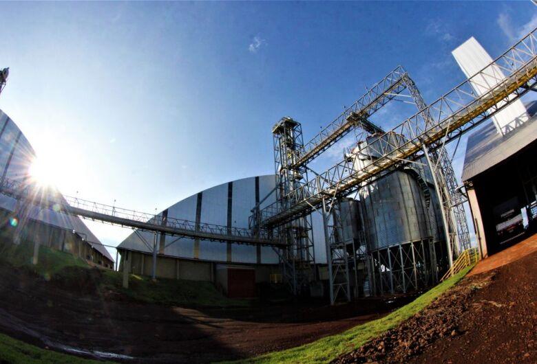 Empresa chinesa se instala em Maracaju e contrata 300 funcionários