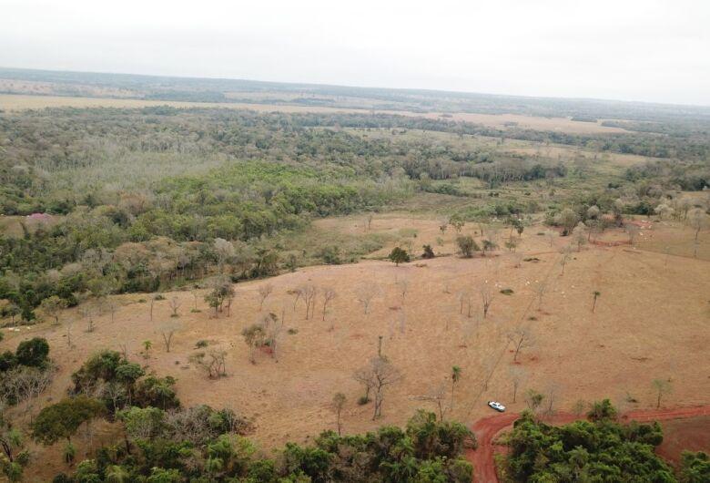 Polícia Ambiental aplica quase 6 milhões em multas por desmatamento ilegal em MS