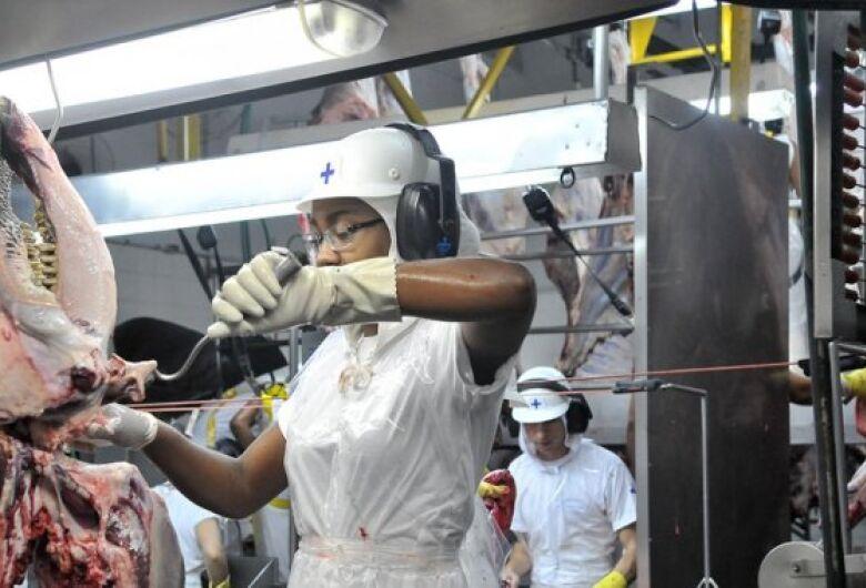 Celulose e carnes geram receita de US$ 3,03 bilhões em MS