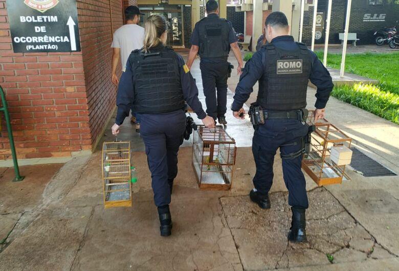 Polícia recupera bicudo roubado no valor estimado em cerca de 3 mil