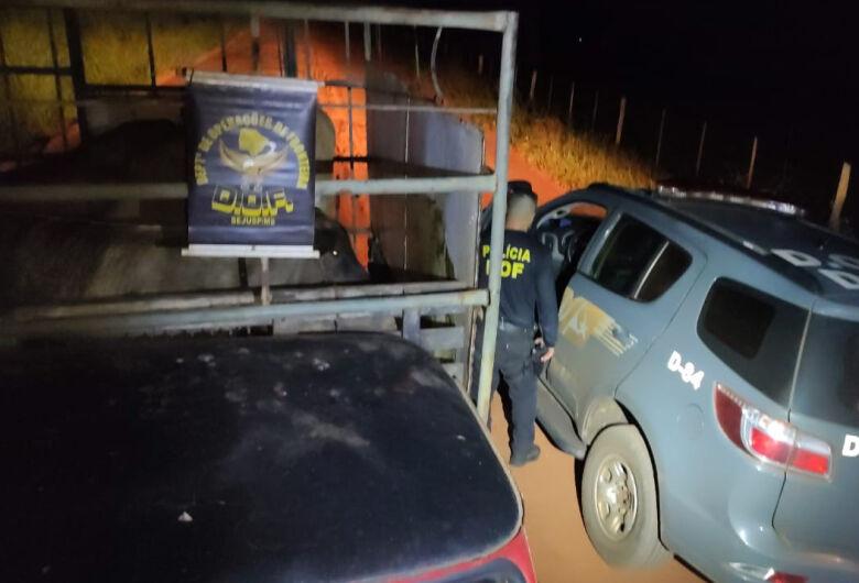 Motorista foge e abandona caminhão com 4 bovinos