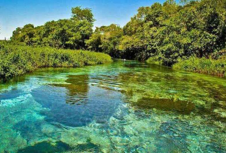 Acordo de Cooperação Técnica entre Ministério Público, Imasul e ONG visa conservar águas de Bonito