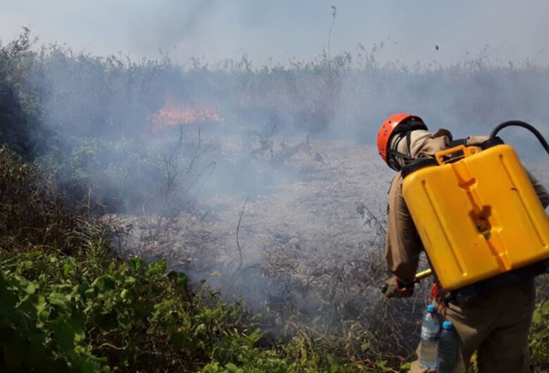 Operação Pantanal elimina maioria dos focos de calor; bombeiros monitoram área