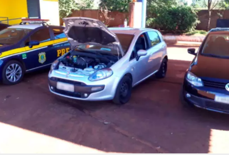 Dupla é presa a caminho de negociar carro furtado por cavalho e plantação em MS