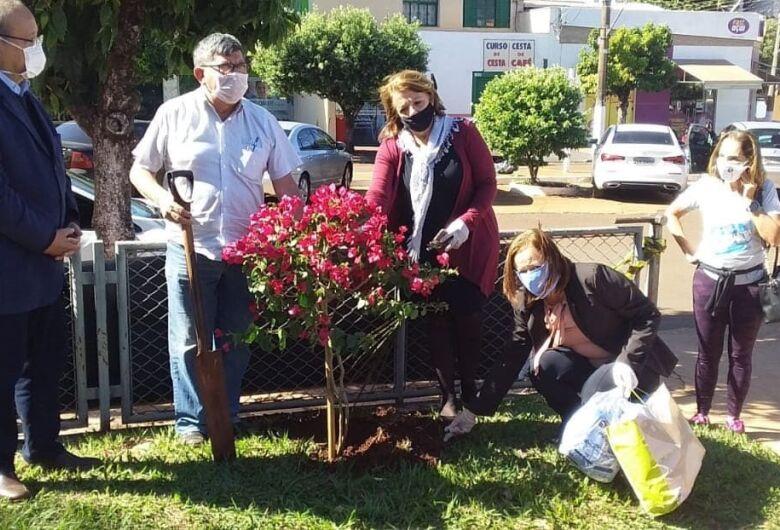 Em memória de médico que morreu de Covid-19, árvore florida é plantada em praça do HV