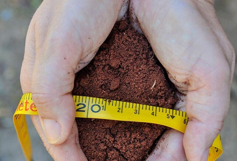 Cientistas desenvolvem tecnologia para avaliação biológica do solo