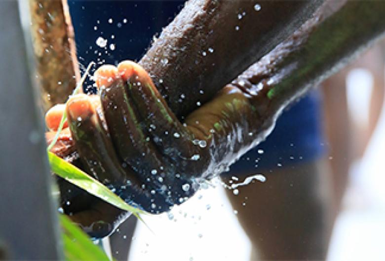 Duas em cada cinco escolas de todo o mundo não tinham instalações básicas para lavar as mãos antes da pandemia de COVID-19, afirmam UNICEF e OMS