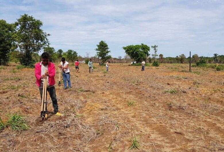 Terras indígenas recebem quase R$ 1 milhão para recuperação de vegetação nativa