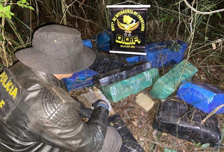 DOF apreende mais de 400 kg de maconha em mata