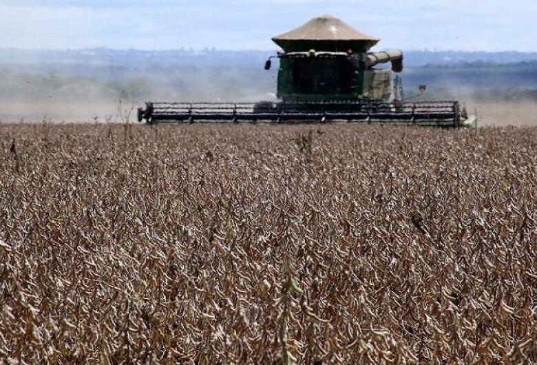 Mato Grosso do Sul tem a 5ª maior produção de grãos do país