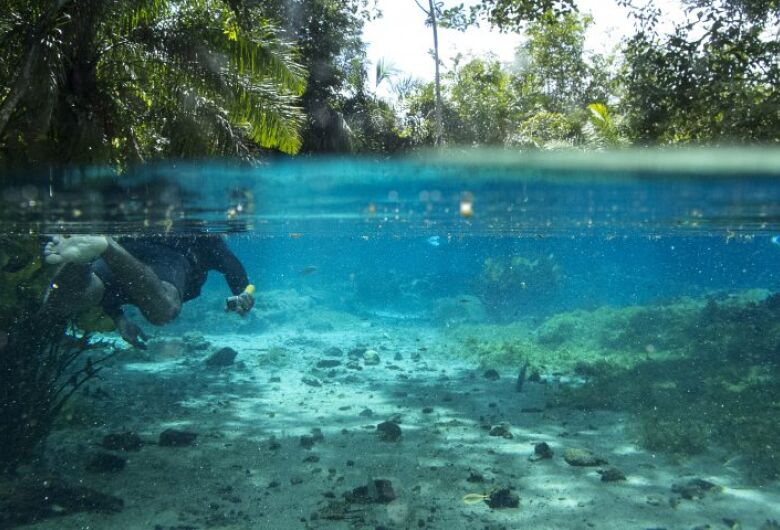 """MS adota selo nacional """"Turismo Responsável – Limpo e Seguro"""""""