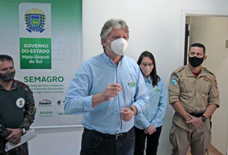 Relatório da Operação Pantanal mostra aumento dos focos de incêndio em MS