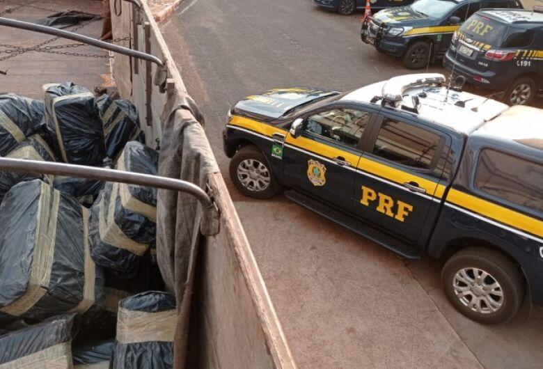 Apreendida em Dourados, carga de 4,7 toneladas de maconha seguia para Santos (SP)