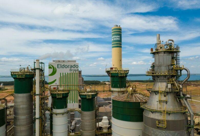 Eldorado Brasil tem vagas abertas para Mato Grosso do Sul e São Paulo