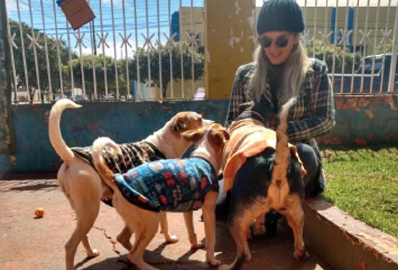 """""""Muita gente desconta no animal, como se ele tivesse culpa"""", diz criadora de abrigo"""