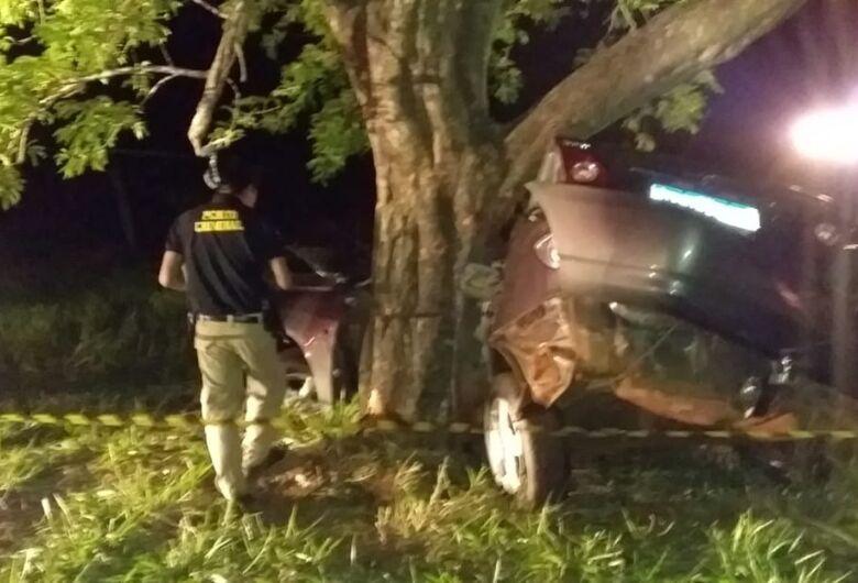 Motorista morre após colidir contra árvore
