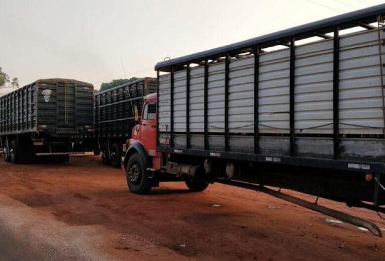 Durante fiscalização, Iagro e DOF apreendem três caminhões com animais e guia de trânsito falsificada