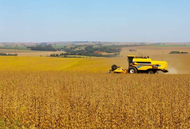Frente da Agropecuária defende equilíbrio entre produtividade e preservação ambiental