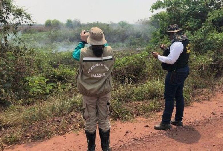 Fazendeiros serão autuados por crime ambiental no Pantanal