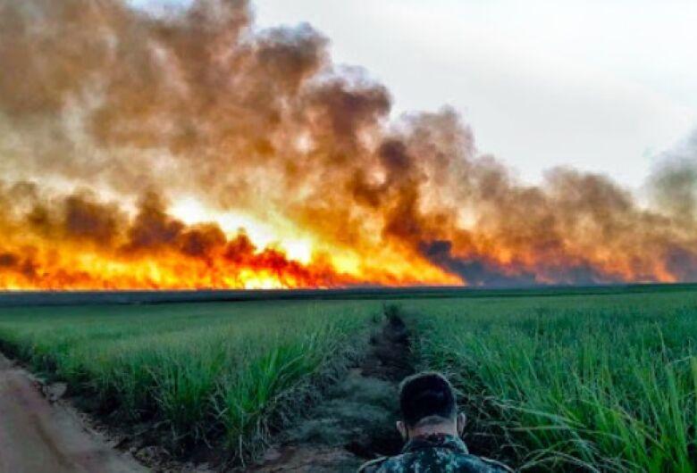 Pantanal tem menos de 300 militares combatendo os incêndios florestais