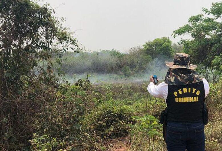 Números de multas e de focos de queimadas no MS já superam 2019
