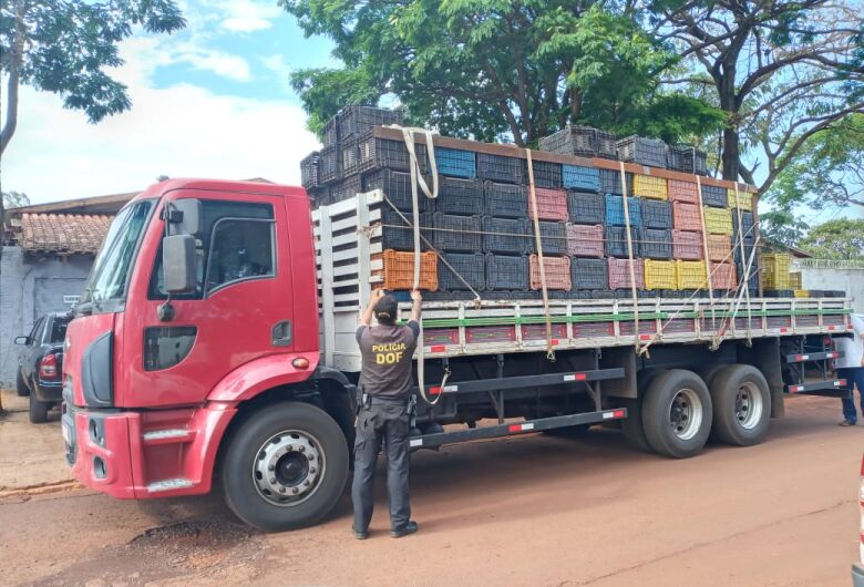 Com apreensão de caminhão com quase três toneladas de maconha, DOF mais que dobra o volume de drogas apreendido em 2020