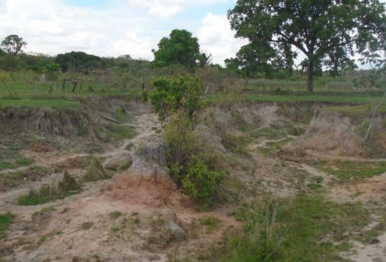 Paulista é autuado pela PMA em R$ 10 mil por erosões em 2 hectares de área