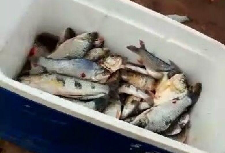 Pescador é autuado após divulgação de fotos e vídeos de pesca predatória nas redes sociais