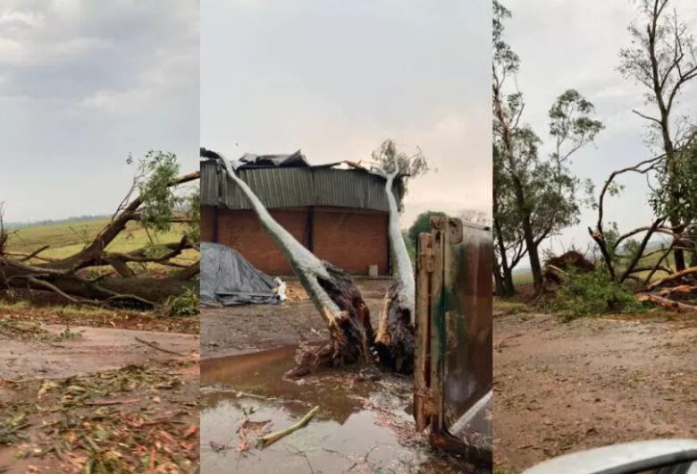 Tempestade com granizo surpreende e deixa rastro de destruição na região de Amambai