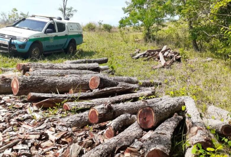 Sitiante derrubou aroeiras ilegalmente para usar como postes e estacas