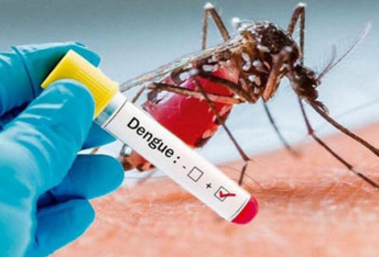 Pesquisadores da UFGD criam alternativas no combate ao Aedes aegypti