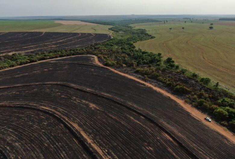 PMA de Naviraí autua empresa paranaense em R$ 493 mil por incêndio em vegetação nativa