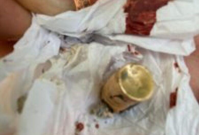 Exames mostram que onças feridas em incêndio no Pantanal também haviam sido baleadas