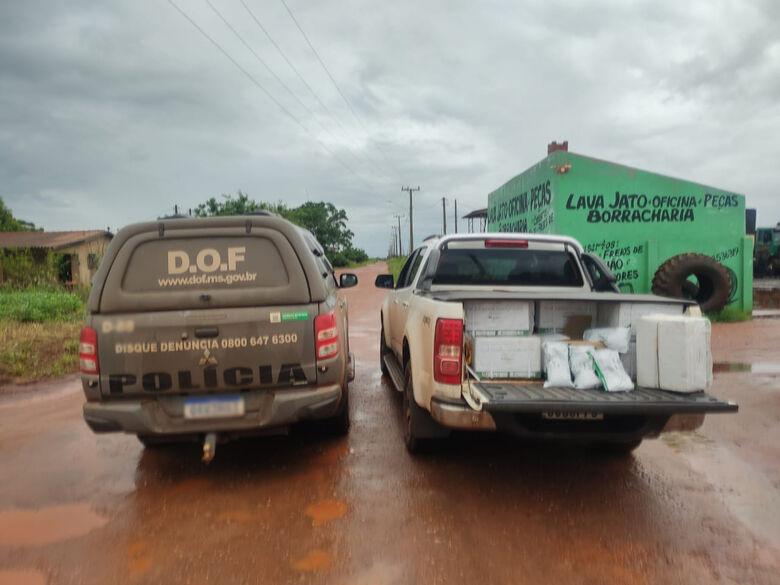 Camionete com 250 quilos de agrotóxicos foi apreendida pelo DOF - Crédito: Divulgação