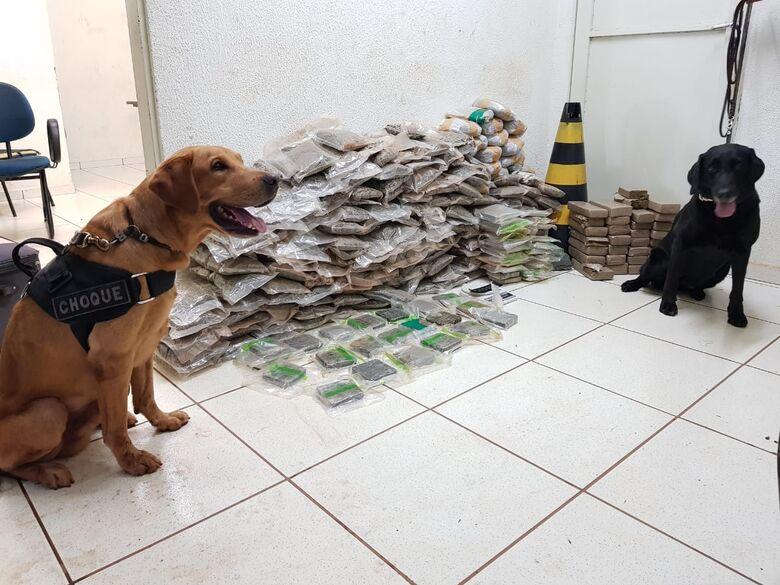 Polícia Militar apreende mais de 66 kg de drogas no Terminal Rodoviário de Campo Grande - Crédito: Divulgação