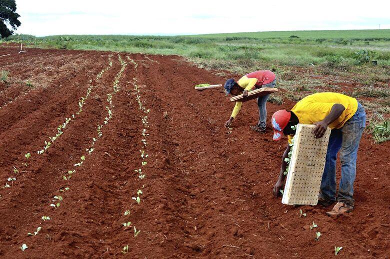Lançado programa para agilizar titulação de áreas rurais da União - Crédito: Divulgação