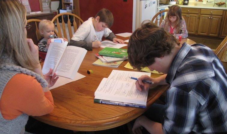 Especialistas alertam para possíveis problemas da educação domiciliar - Crédito: Agência Câmara de Notícias
