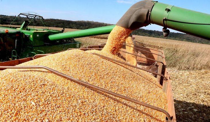 MS colhe 13 milhões de toneladas de soja e bate recorde de produção -