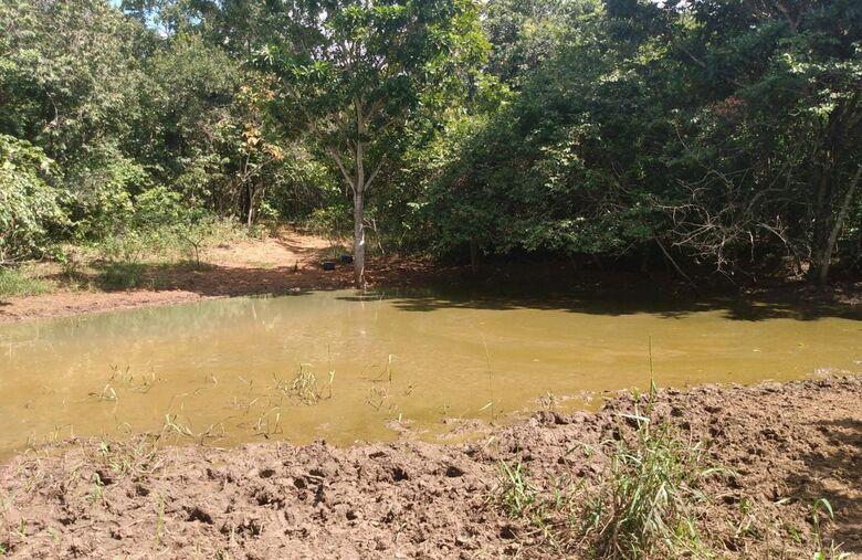 PMA de Três Lagoas autua pecuarista em R$ 5 mil por degradações ambientais - Crédito: PM MS
