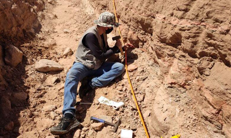 Escavação em rodovia de SP revela fragmentos de dinossauro - Crédito: Divulgação/Eixo SP