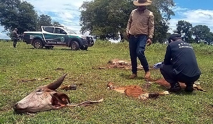 Governo cria delegacia de combate a crimes rurais e abigeato, medida comemorada pelos produtores -