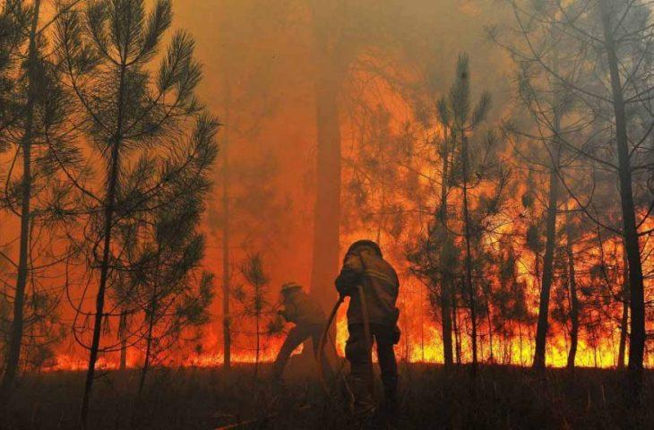 MS inova e institui plano de manejo integrado do fogo para prevenção e combate a incêndios florestais - Crédito: Divulgação
