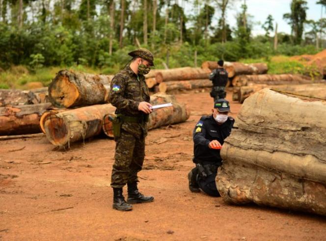 Plano Amazônia 2021/2022 tem resolução aprovada - Crédito: Agência Brasil