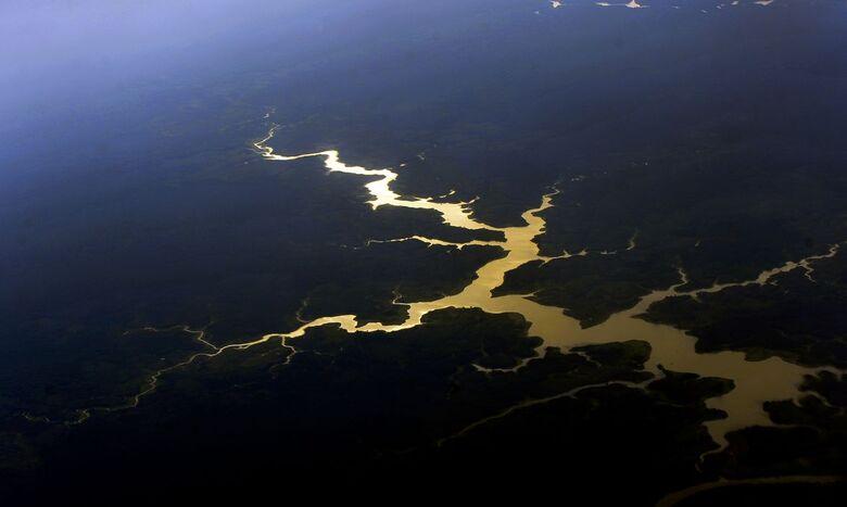 Brasil é o primeiro do mundo em potencial de descoberta de espécies - Crédito: Valter Campanato/Agência Brasil