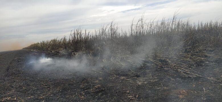 PMA multa em mais de R$ 1 milhão empresa por incêndio ilegal em lavoura - Crédito: Divulgação/PMA